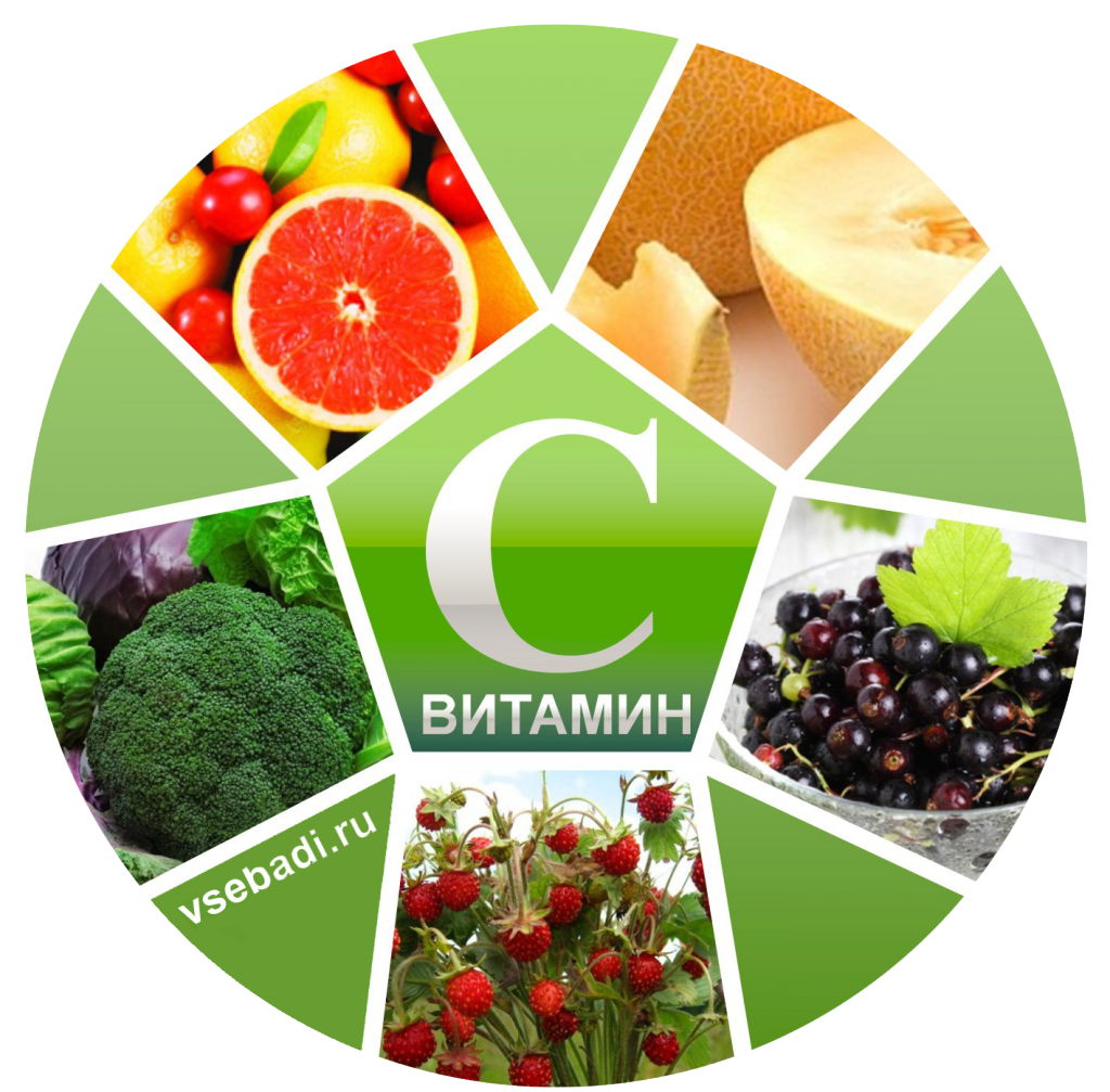 ВД февраль 2018 - Страница 2 Vitamin-S-1024x1007